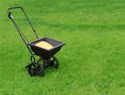 Odpowiednie nawożenie trawnika to podstawa zdrowego trawnika
