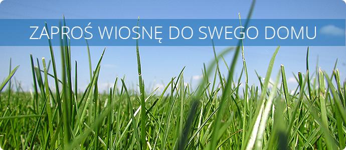 promocja na trawę w rolce