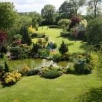 trawa-w-ogrodzie