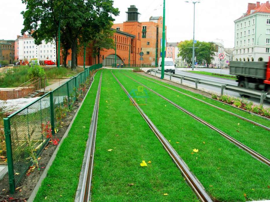 trawnik-trasa-tramwajowa