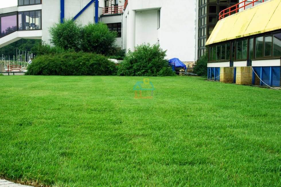 trawniki-malta-poznan