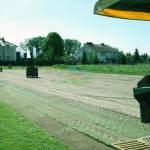 trawniki rolowane poznan