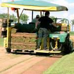 zbieranie-trawnikow-w-rolki