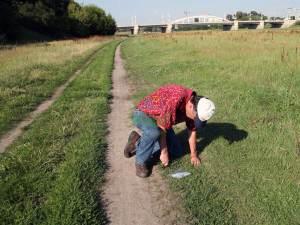 najwyzszej-jakosci-recznie-hodowana-trawa