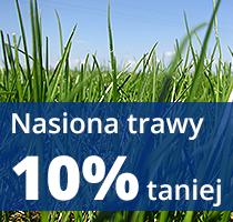 promocja-nasiona-trawy