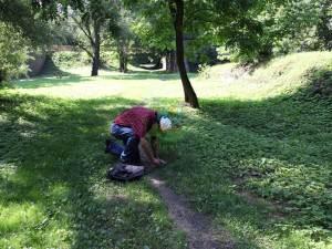 recznie-hodowana-trawa-najwyzszej-jakosci