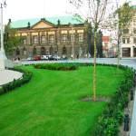 Trawnik na Placu Wolności w Poznaniu