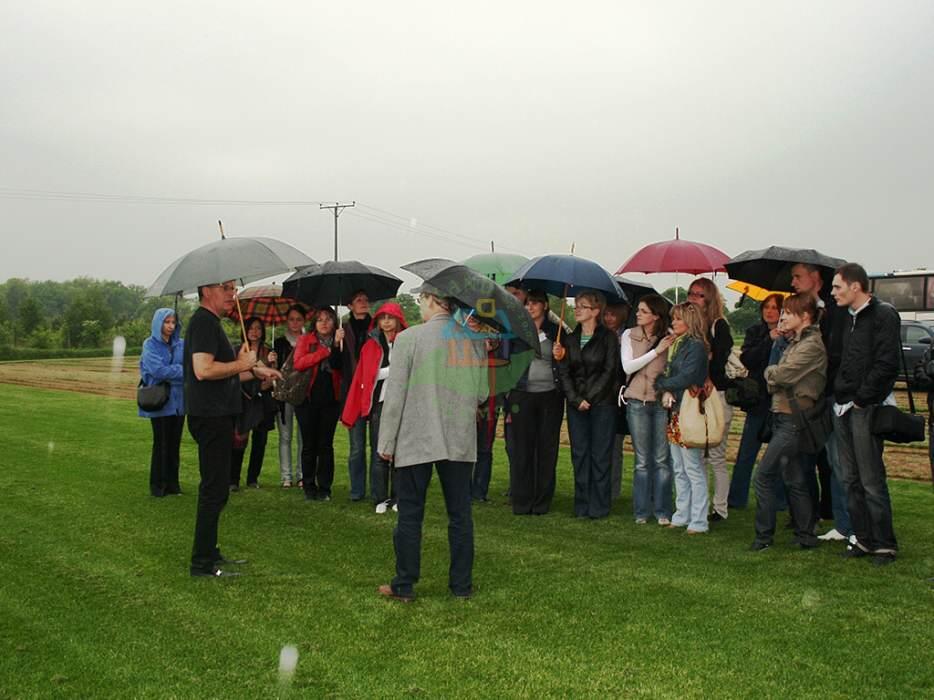zielona-swieza-trawa-w-rolkach-nawet-w-trakcie-deszczu